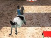 gioca a Horsejumping 3D