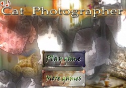 Giochi Di Puzzle Cat Photographer